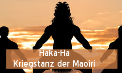 tl_files/bilder/grafiken/haka-ha.png