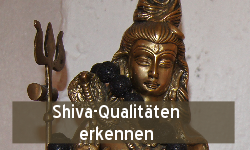 tl_files/bilder/grafiken/shiva-qualitaeten.png